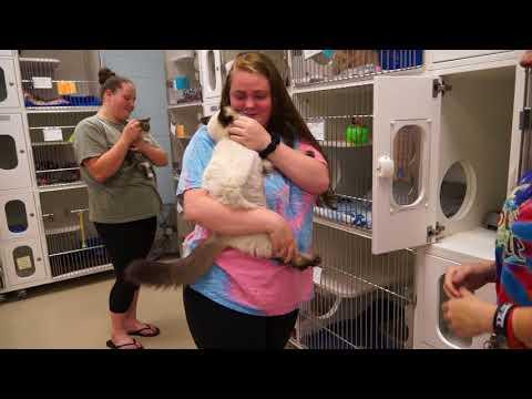 WCJC Animal Shelter, May 25