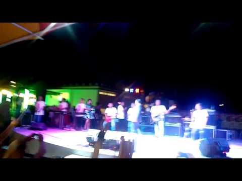 All Artis NEW PALLAPA LIVE Konser di GO FUN Bojonegoro 19 Mei 2017