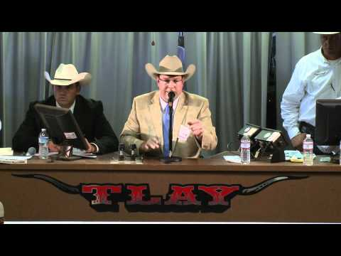 Bailey Ballou Takes Top Honors at LMA's 2012 World Livestock Auctioneer Championship from YouTube · Duration:  45 seconds