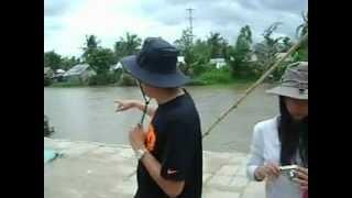 Farming - Basa Fish 1