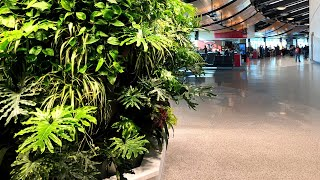 Stay on top of the greenroof & greenwall world by subscribing here: http://bit.ly/1habujw.the appleton international airport, with airport code atw, in apple...