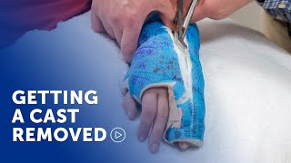 Having your cast removed at Boston Children's Hospital