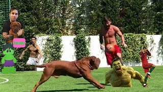Facts about Messi's dog HULK | Name, Age, Breed, French Mastiff