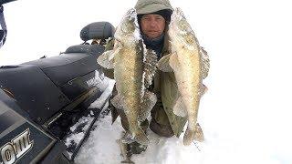 Ловля судака на Рыбинском водохранилище . Март 2018 .