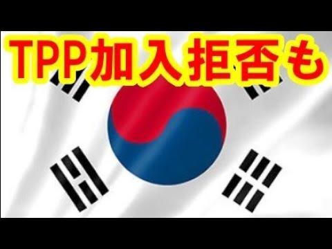 日本政府のTPP加盟拒否措置に韓国が激しい反発を見せている 100件以上の対抗措置リストも存在