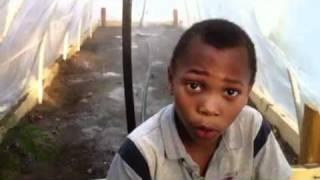 Kids Build A Vegetable Garden Greenhouse