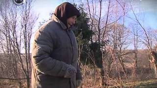Домик в деревне (Москва 24)(Телеканал