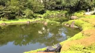 【お知らせ】 ㈱山口敏太郎タートルカンパニーの公式チャンネルです。ぜ...