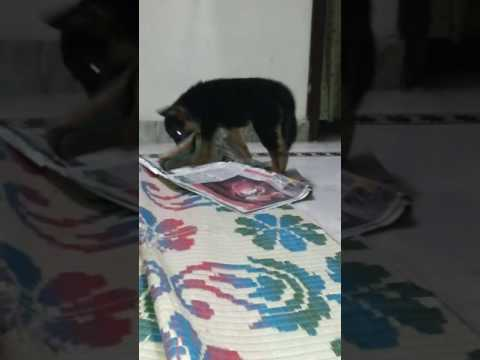 She loves Newspaper