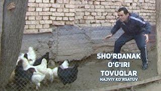 Sho'rdanak - O'gri tovuqlar | Шурданак - Угри товуклар (hajviy ko'rsatuv)