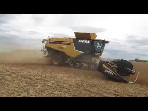 CLAAS LEXION 780TT with 45ft Mac-Don cutting Soybeans