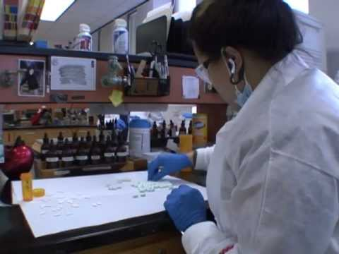 Download HPD Crime Lab: Past, Present and Future (Houston Police Department, HPD Video Production)