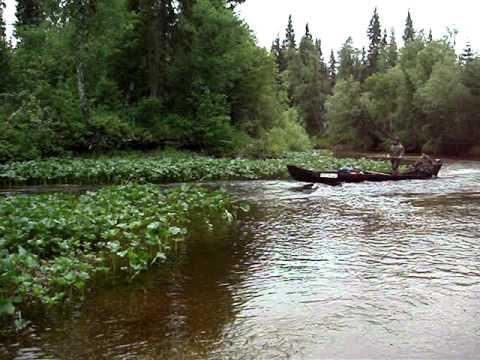 рыбалка хариуса на реке седью