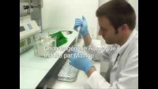 Régénération cartilage du genou.mp4