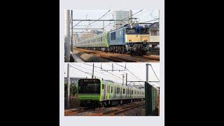 【JR東】E235系 山手線〝トウ33編成 新津出場配給〟