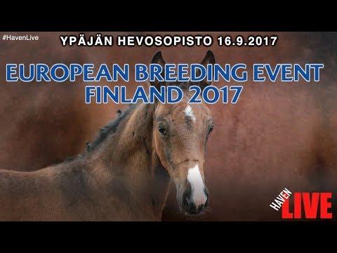 European Breeding Event Finland 16.9.2017