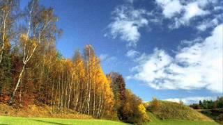Karol Lipiński Rondo alla Polacca op.13.wmv