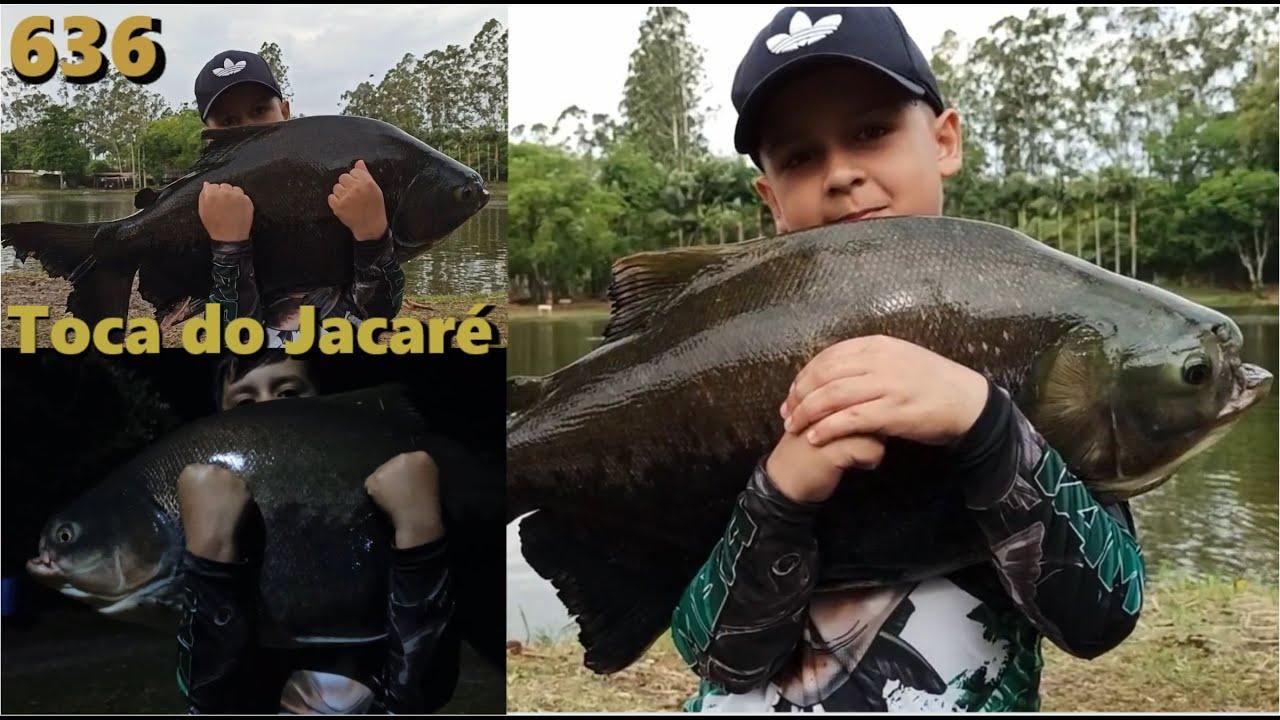 Uma visita ao famoso Pesque Pague Toca do Jacaré no Paraná - Programa Fishingtur 636