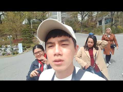 Suka Duka Menjadi Tour Guide Selama Di Tokyo Jepang ( Behind Scenes )