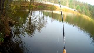 Рыбалка на оз. Трофейное(Выезд на щуку. Озеро Трофейное с. Лычанка., 2013-10-28T21:03:40.000Z)
