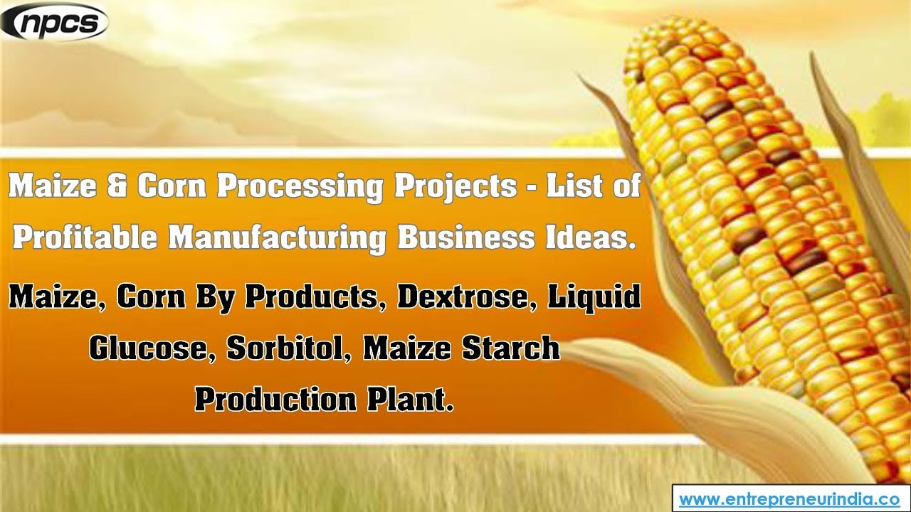 Maize Corn Processing Projects