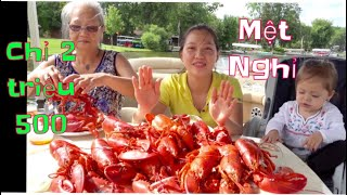 Vlog 715 🇺🇸|| Nguyên Bàn TÔM HÙM Giá Chỉ 2 Triệu 500 Ngàn. Ăn Xong Đi Không Nổi. Lobster Feast
