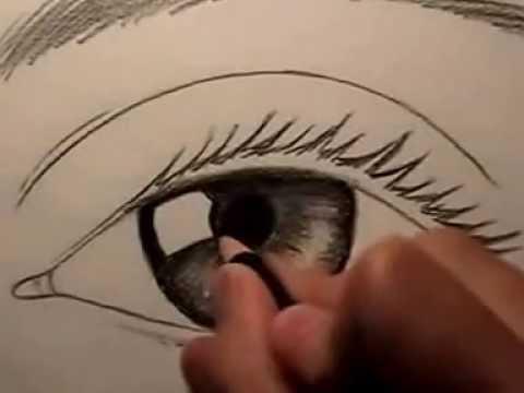 สอนวาดรูปตา ด้วยดินสอ