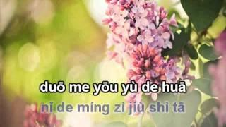 Hoa đinh hương karaoke beat 丁香花伴奏
