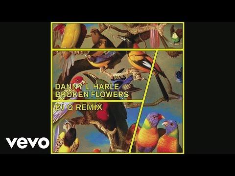 Danny L Harle  Broken Flowers DJ Q Remix  Audio
