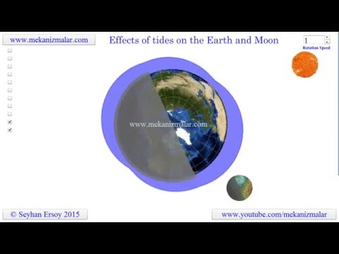 effects of tides on the earth and the moon