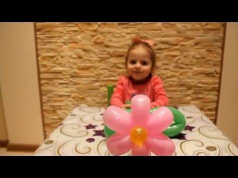 Цветочки ромашки из воздушных шариков шдм Flower of balloons