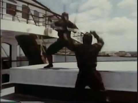 The Master: Ninja Fight 08