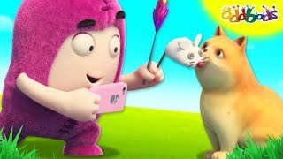 Oddbods | Secret Life Of Pets | Funny Animal Cartoons