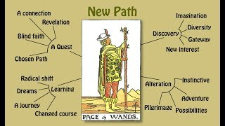 Tarot card meanings  Part 1 The Minor Arcana