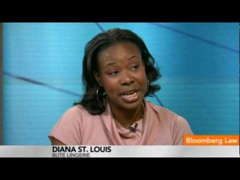 Stealth Lawyer: Diana St. Louis, Lingerie Designer