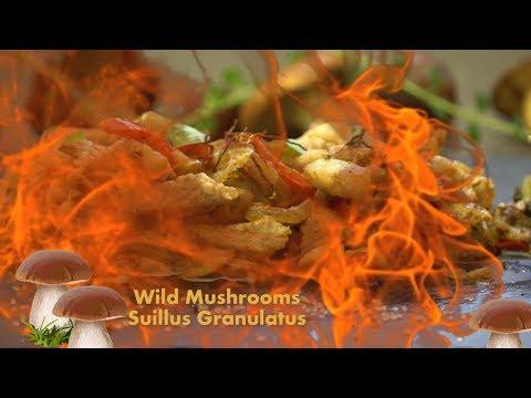 How To Clean & Cook Mushrooms Suillus Granulatus | #DoStathi