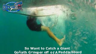 Top Most Popular Goliath Grouper Fishing Video - Largest Goliath Grouper Ever on Paddleboard