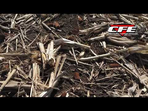 Frost Damage Potential