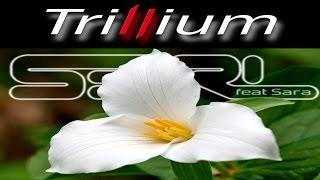 Repeat youtube video Trillium - S3RL feat Sara