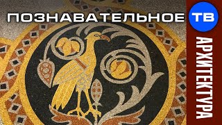 Птичий пол Морского собора (Познавательное ТВ)