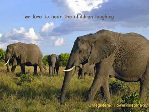 Elephantsong., Kamahl,