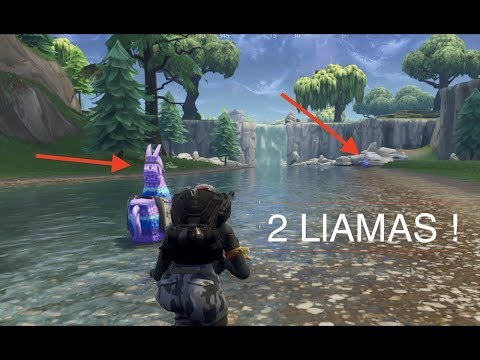 EPIC 2 Llama Find And EPIC Fail