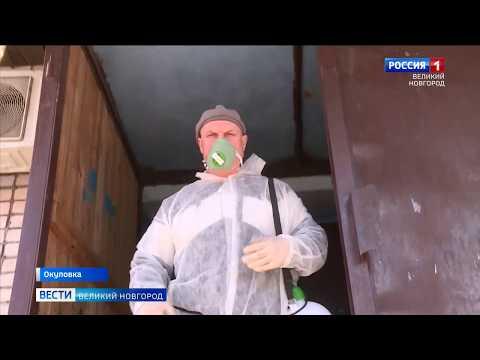 ГТРК СЛАВИЯ Коронавирус в Окуловке 23 04 20
