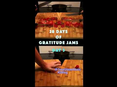 Day 3 - 28 Days of Gratitude Jams