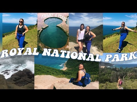 royal-national-park-//-hiking-to-the-figure-8-pools