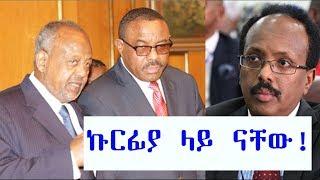 ETHIOPIA - ሶማሊያና ጅቡቲ ከኢትዮጵያ ጋር ኩርፊያ ላይ ናቸው - DireTube News