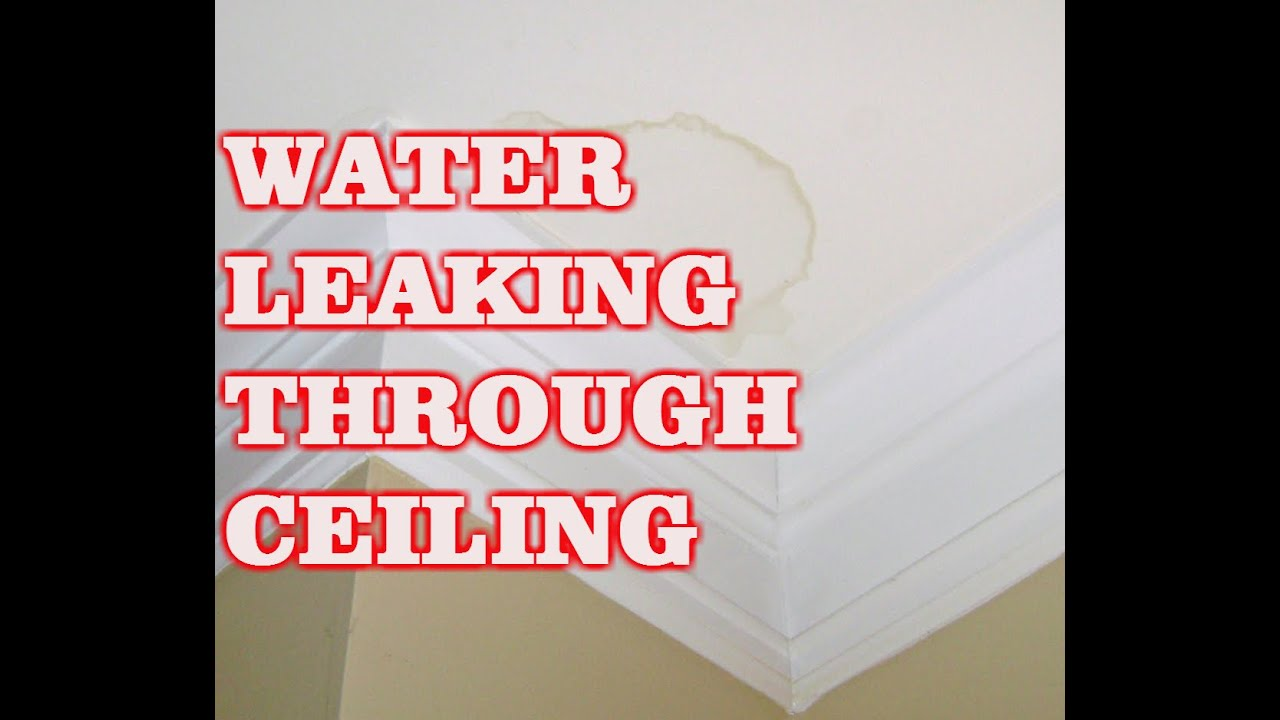 Water Leaking Through Ceiling Bathroom Youtube