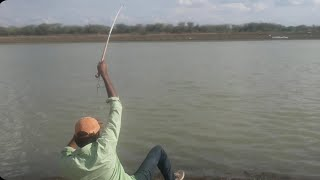 Best fishing video #catch snakehead fish#big maral