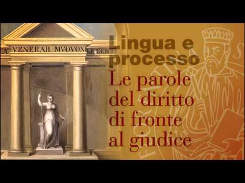 1 Lingua e Processo
