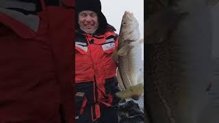 Морская рыбалка открытие сезона 2021 г Териберка